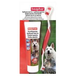 Beaphar Tooth Brush+Paste Combipack