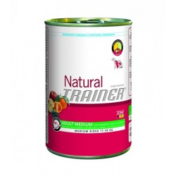 Trainer Natural Adult Medium Beef & Rice & Ginseng