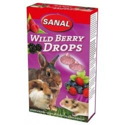 Sanal  для грызунов Дикие ягоды, 45 грамм