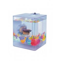 AA-Aquariums 1212 Aqua Box Betta