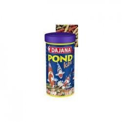Pond Koi