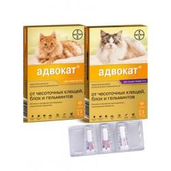Bayer Адвокат для кошек