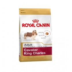 Royal Canin Cavaler King Charles Adult