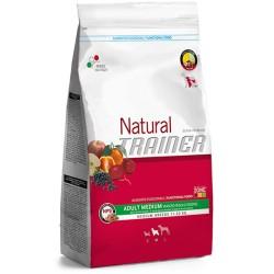 Trainer Natural Adult Medium Beef / Rice & Ginseng