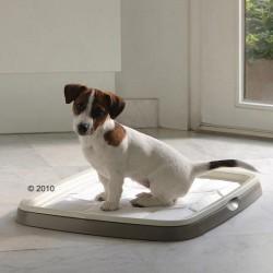"""Набор """"SAVIC"""" для приучивания собак к месту"""