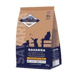 Savarra Light Cat