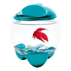Аквариум Тетра Бетта Bubble turquoise 1,8 л