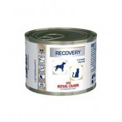 Royal Canin Recovery Feline (195 гр.)